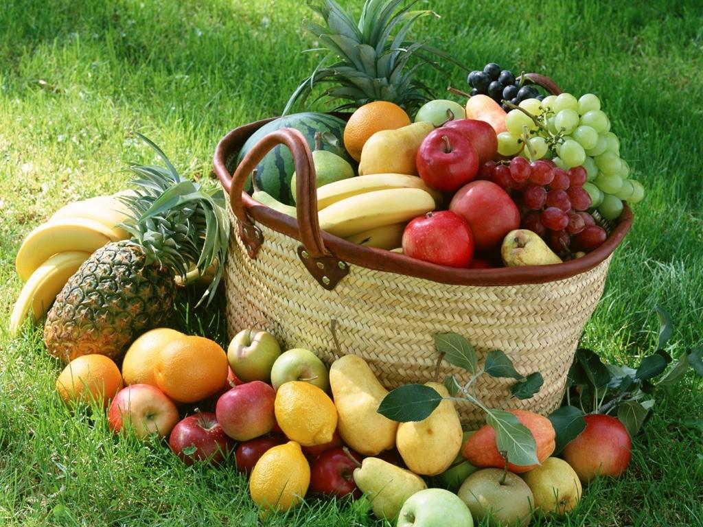 果物 壁紙 - Much Fruit WALLPAPER