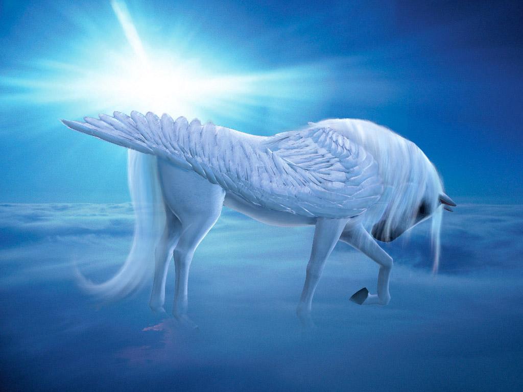 雲上のペガサス 壁紙 - Pegasus WALLPAPER
