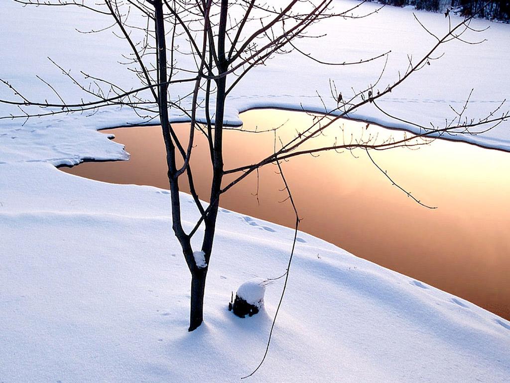 雪原の池 壁紙 - Pool on Snowfield WALLPAPER