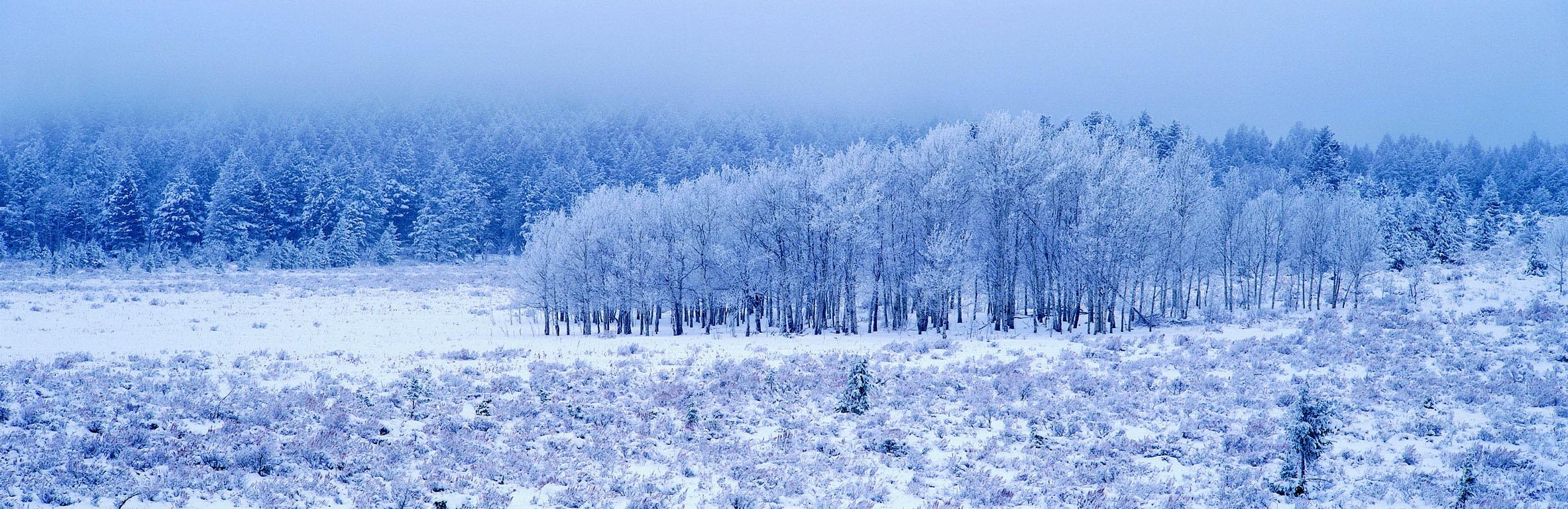 白銀の山麓 壁紙 - Mountain of Silvery White WALLPAPER