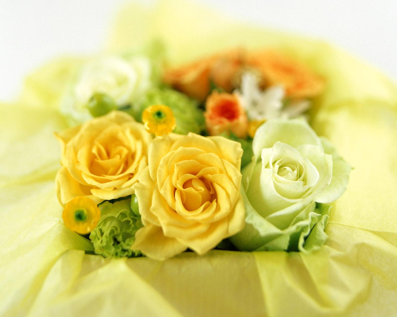花 壁紙 - Flower WALLPAPER